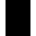 Brushes logo